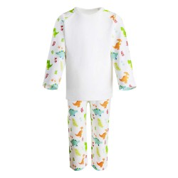 Dinosaur Print Long Sleeve Pyjama Set